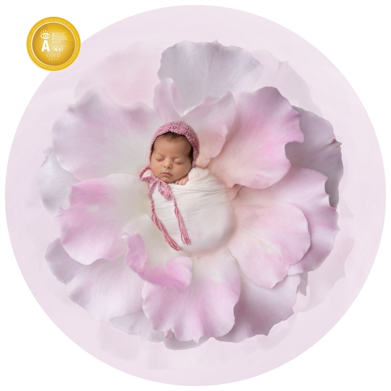 newborn baby in a rose