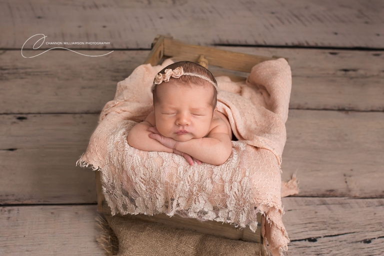 Newborn Photography Perth Reviews