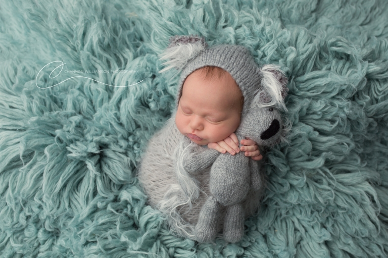 Newborn dressed as a koala on a fluffly blue blanket