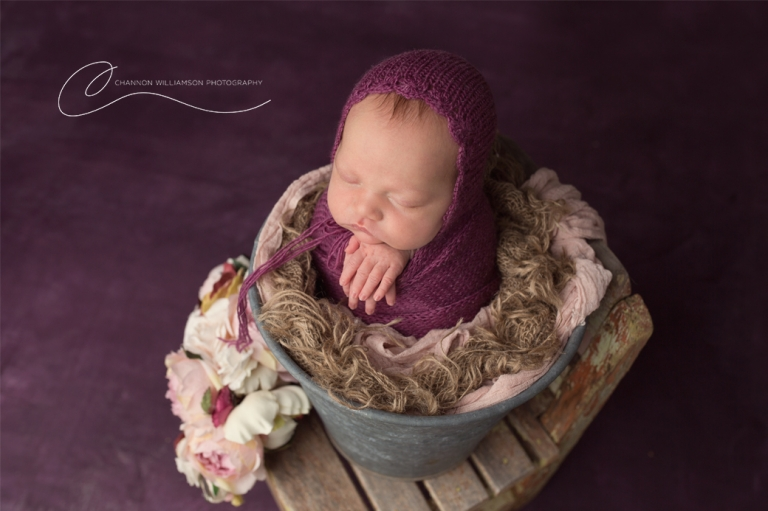Newborn posed in a bucket